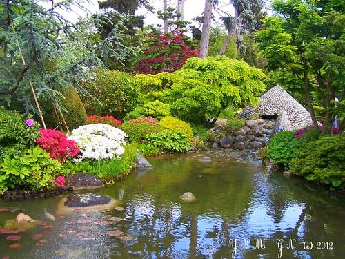 japanese garden albert kahn paris vase des 1000 fleurs m flickr. Black Bedroom Furniture Sets. Home Design Ideas