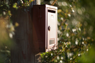 The wild letterbox | by Gnusam