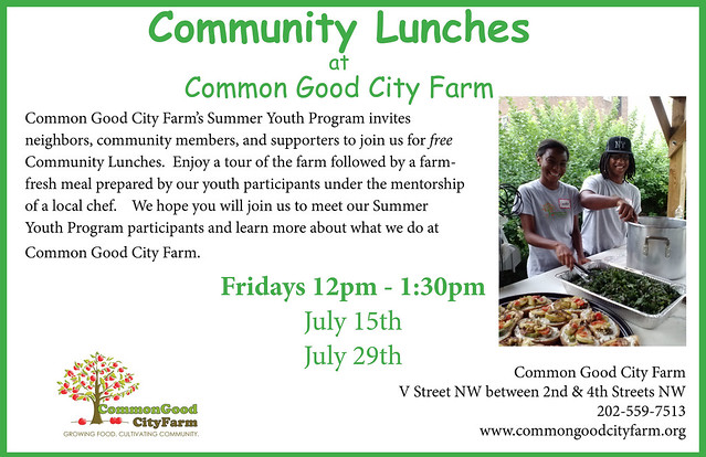 Community Lunch Flyer 2016