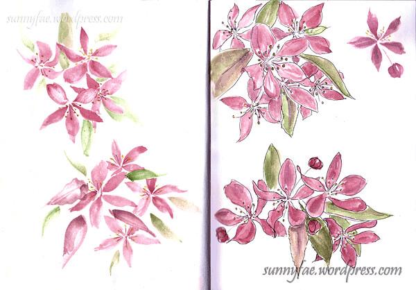 ornamental-cherry-blossom-sketch