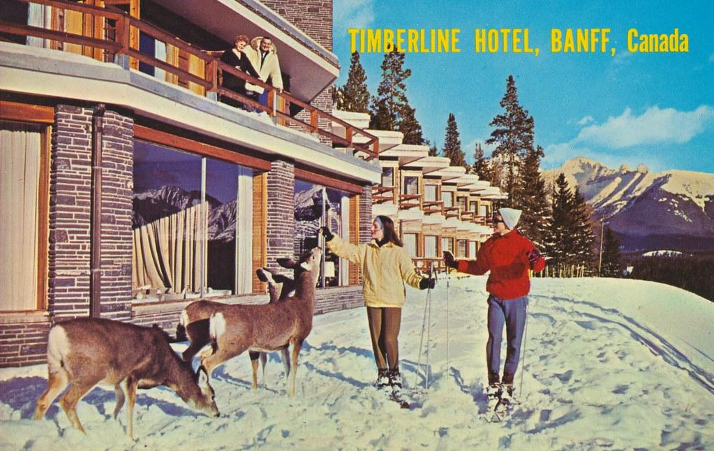 Timberline Hotel - Banff, Alberta