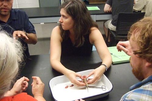 Scientific Writing Workshops