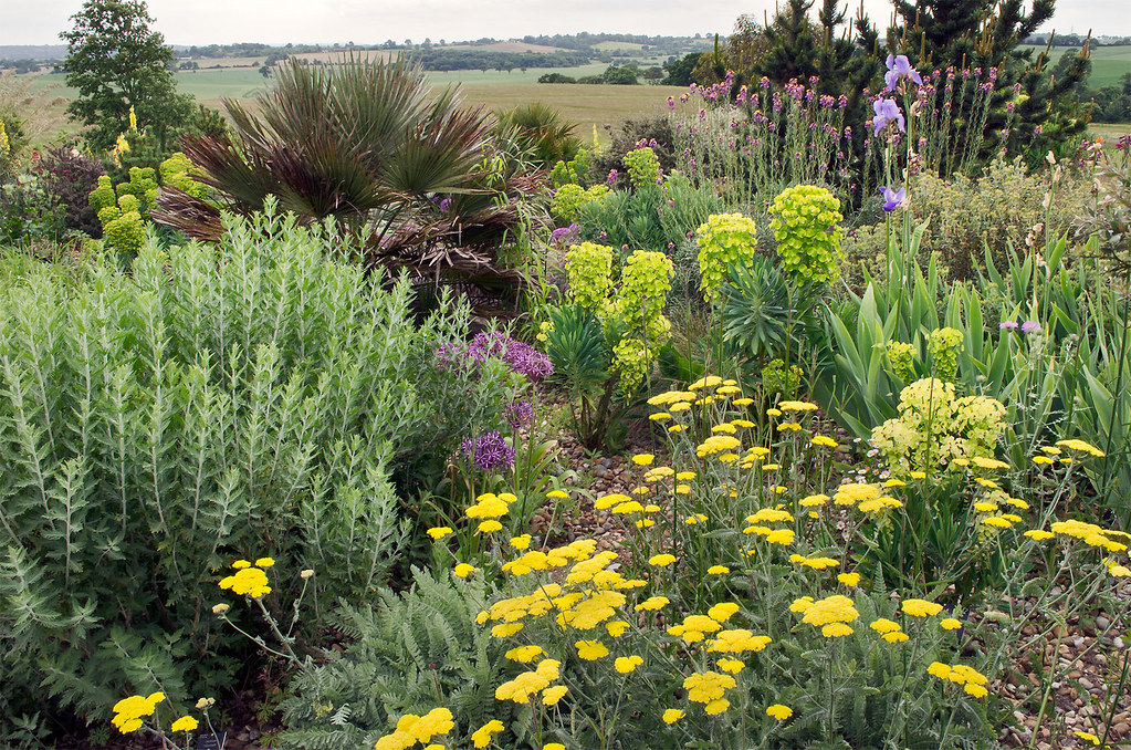 ... Essex Dry Gardens In England (10 Of 21) | RHS Gardens Hyde Hall, Essex