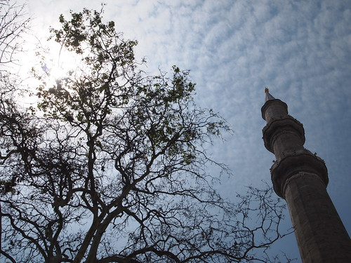 minaret-tree | by rezendi