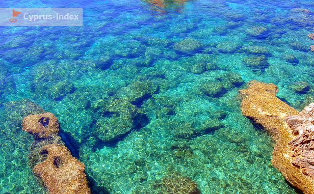 Pure emerald water waiting for connoisseurs of underwater excursions near Bridge of Lovers