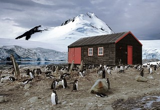 penguin post office | by Christopher.Michel