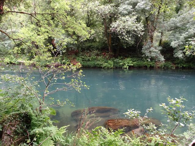 Río Eume en las Fragas Do Eume
