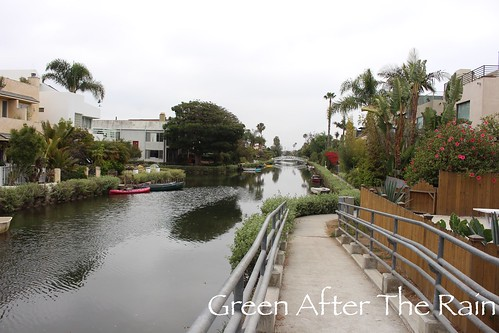 160610d Venice Canals _01