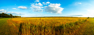 Assateague Panorama | by Oslo In The Summertime