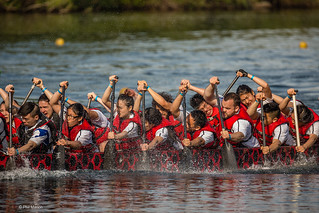 Toronto International Dragon Boat Race Festival | by Phil Marion