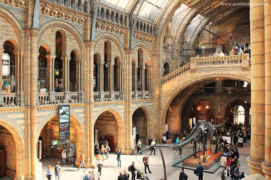 Natural History Museum: cosa fare a Londra