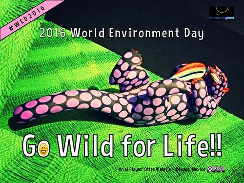 Go Wild for Life!! @unep #wed2016 #fanart