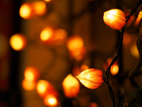 Bokeh | by Manuel Buetti (All images Copr.)