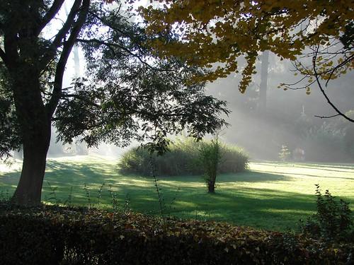 Mi querido jardin bot nico jard n bot nico nacional for Jardin botanico vina