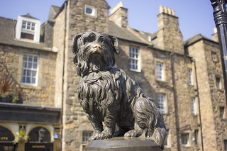 edinburgh, scotland, visit, tourist, visit scotland, visit edinburgh, travel, edinburgh greyfriars, greyfriars, greyfriars bobby, greyfriars graveyard