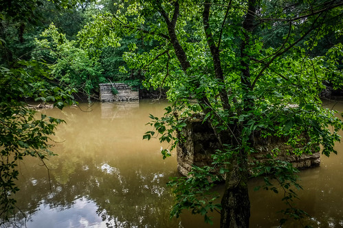 Goat Island in the Broad River-108