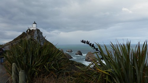 Nugget Point Lighthouse | by pdugmore2001