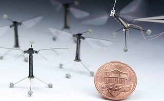 The Smallest Flying Robots | by 4577246c1e1b7b419e88cca8ab7d2749