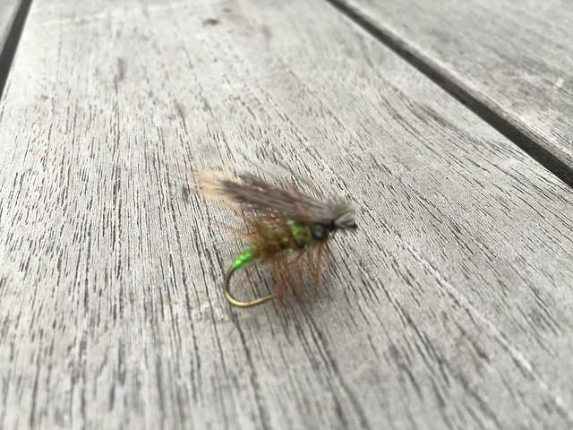 Green McKenzie caddis