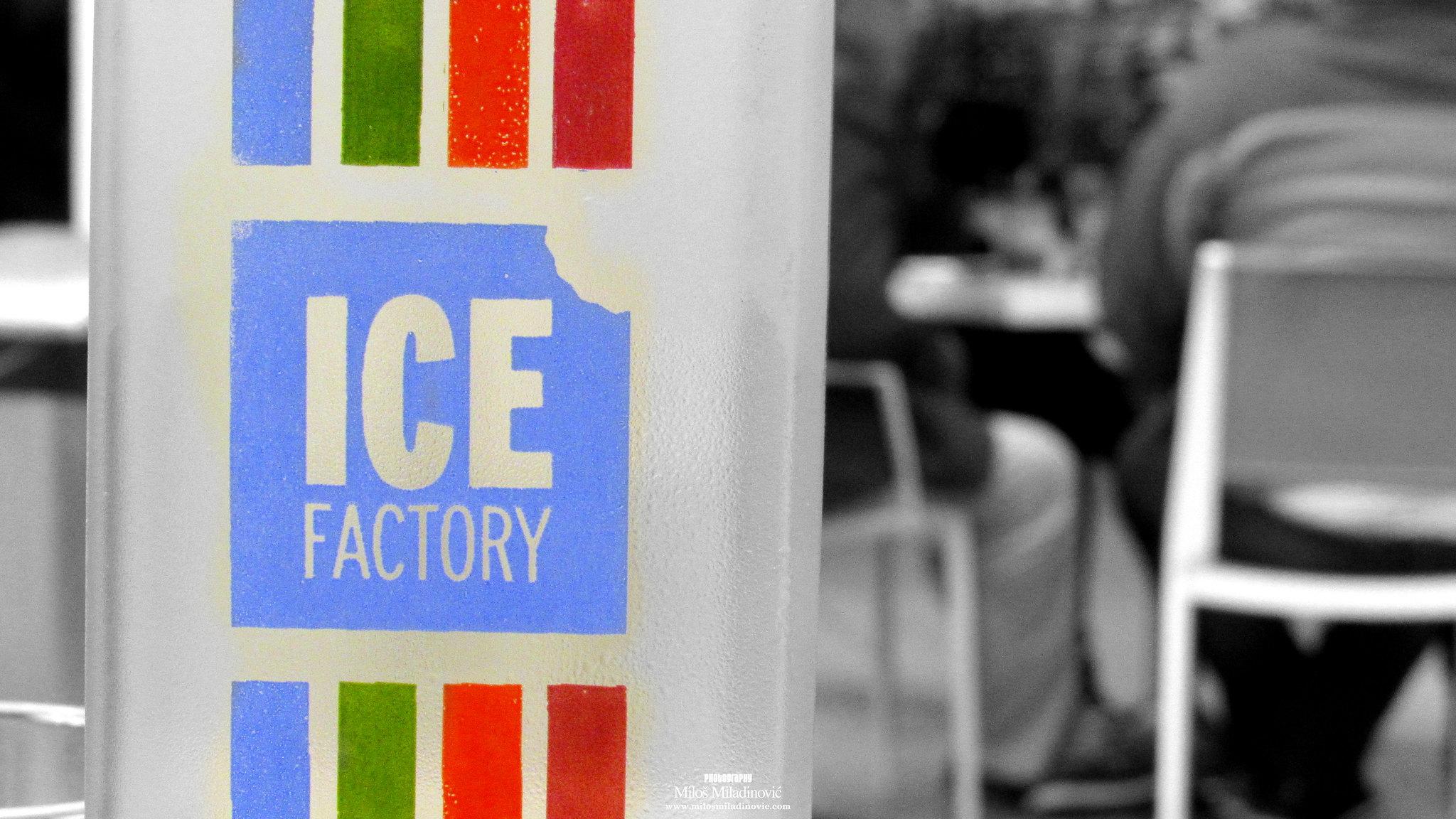 Ice Factory - Paralija