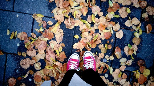 Feet + fall | by anettehustad