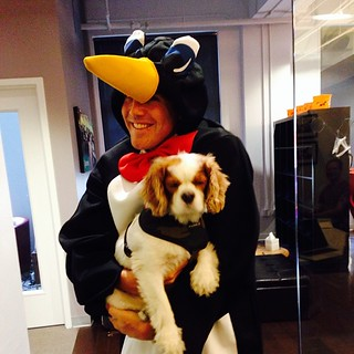 Milo befriends a penguin at #knewton Halloween | by knewton_inc