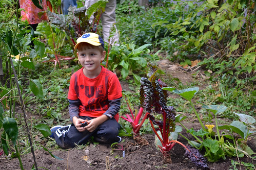 Children's Programs | by Brooklyn Botanic Garden