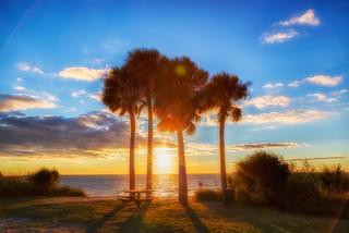 Ballast Island Florida Keys