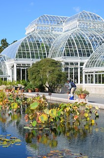 The Lily Pond And The Conservatory | by Joe Shlabotnik
