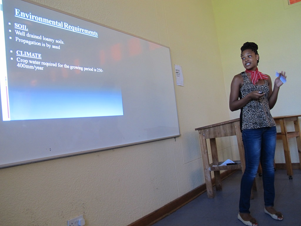 agric student presentation lisa giving powerpoint flickr