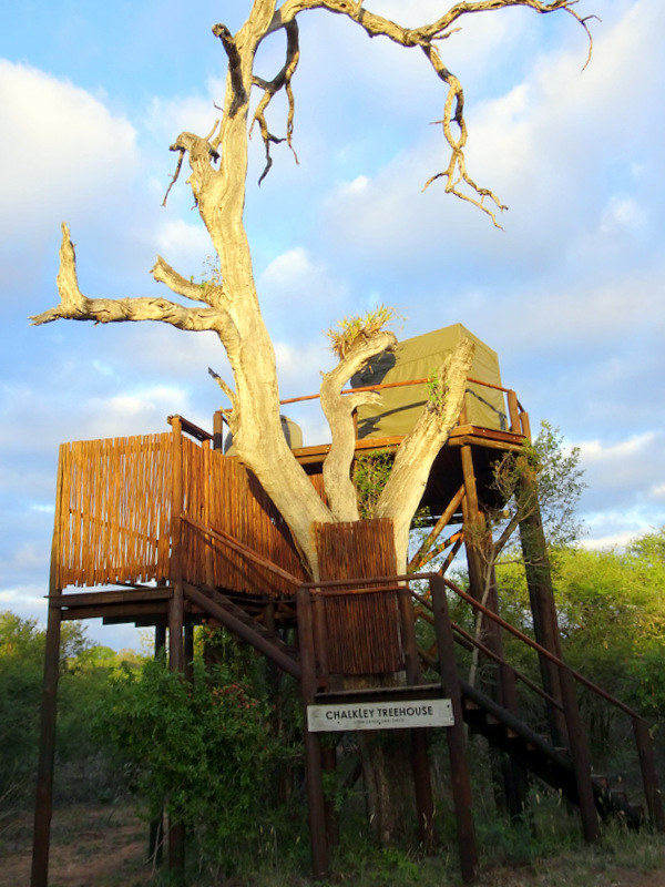 Lion Sands Safari Day 3- Chalkley Treehouse