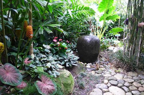 P1060872 dennis hundscheidt 39 s tropical asian themed for Japanese themed garden