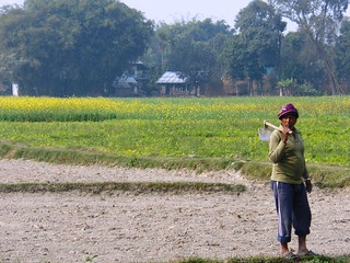 Study tour in Nepal for Sustainable and Resilient Farming Systems Intensification in Eastern Gangetic Plains (SRFSI) | by IFPRI South Asia