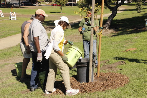 Citizen Arborist Training | by TreePeople