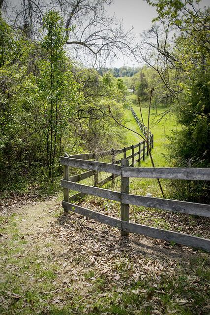 Brian_Kinder Farm Fence 1 LG_042216_2D