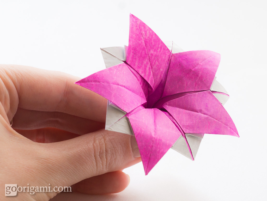 Origami Flower Ipomeia Rubra Origami Flower Ipomeia Rubra Flickr