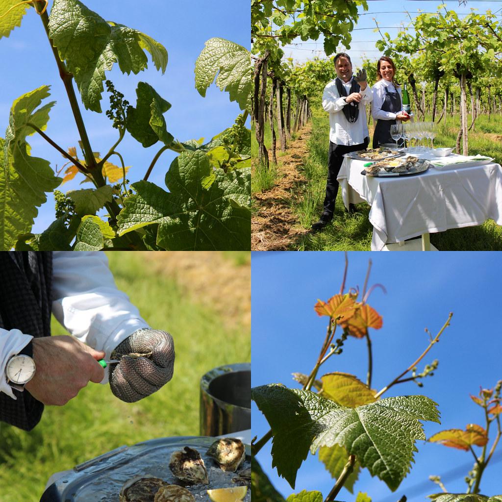 Espanjan Baskimaan viinierikoisuus on Txakoli. Se on kuiva, pirskahteleva ja hapokas valkoviini.