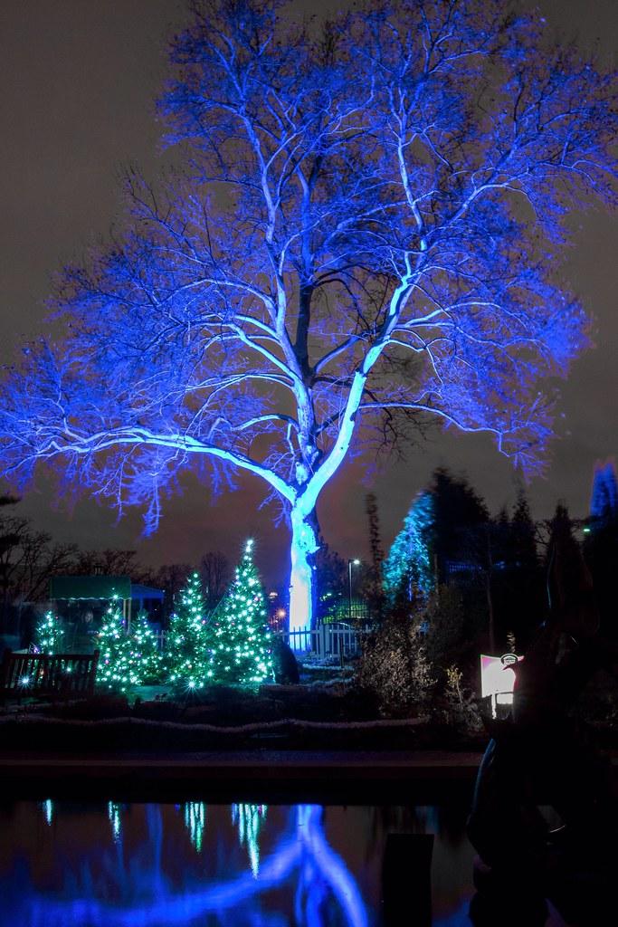 ... Missouri Botanical Garden   Garden Glow | By EEngler