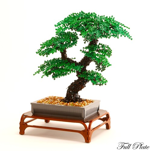 Bonsai (1 of 3) | by Emil Lidé