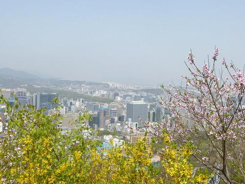C16-Seoul-Mont Namsan-Descente-j7 (9)