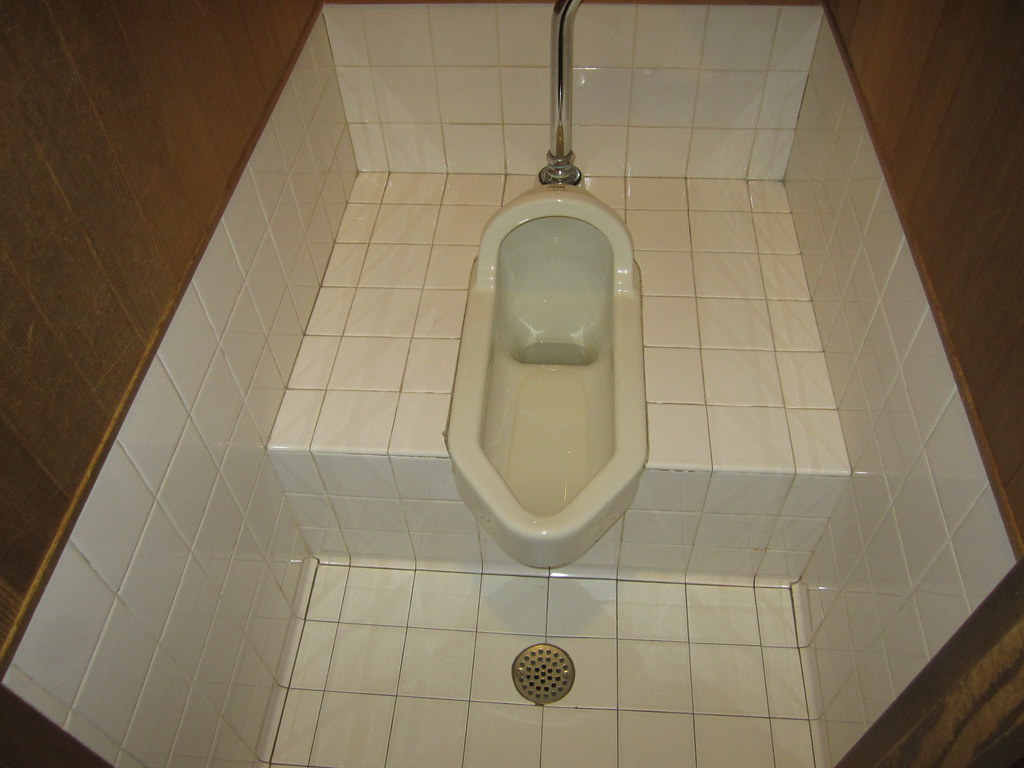 Toto Squat Toilet Picture 1 | This toilet is located in the … | Flickr