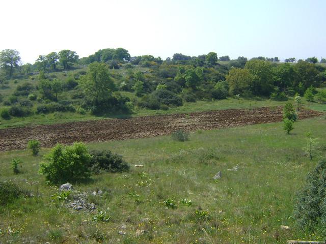 parco-lama-san-giorgio
