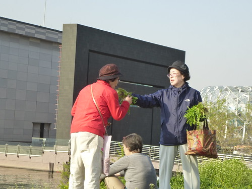 C16-Seoul-Parc Banpo-j3 (6)