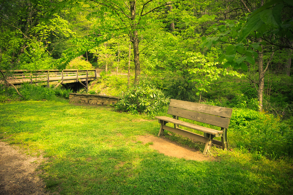 Merveilleux ... Bench And Bridge, Botanical Gardens, Asheville, NC | By Sharon Mollerus
