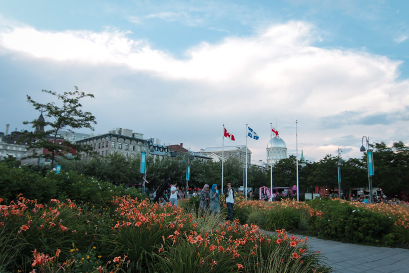 marché_bonseco_blumenmeer_montreal_old_montreal