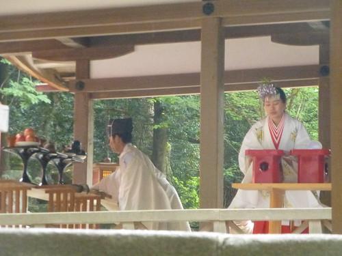 OB-jp16-Nara-mariage (2)