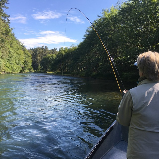 Middle fork of the willamette fishing well top to bottom for Fishing eugene oregon