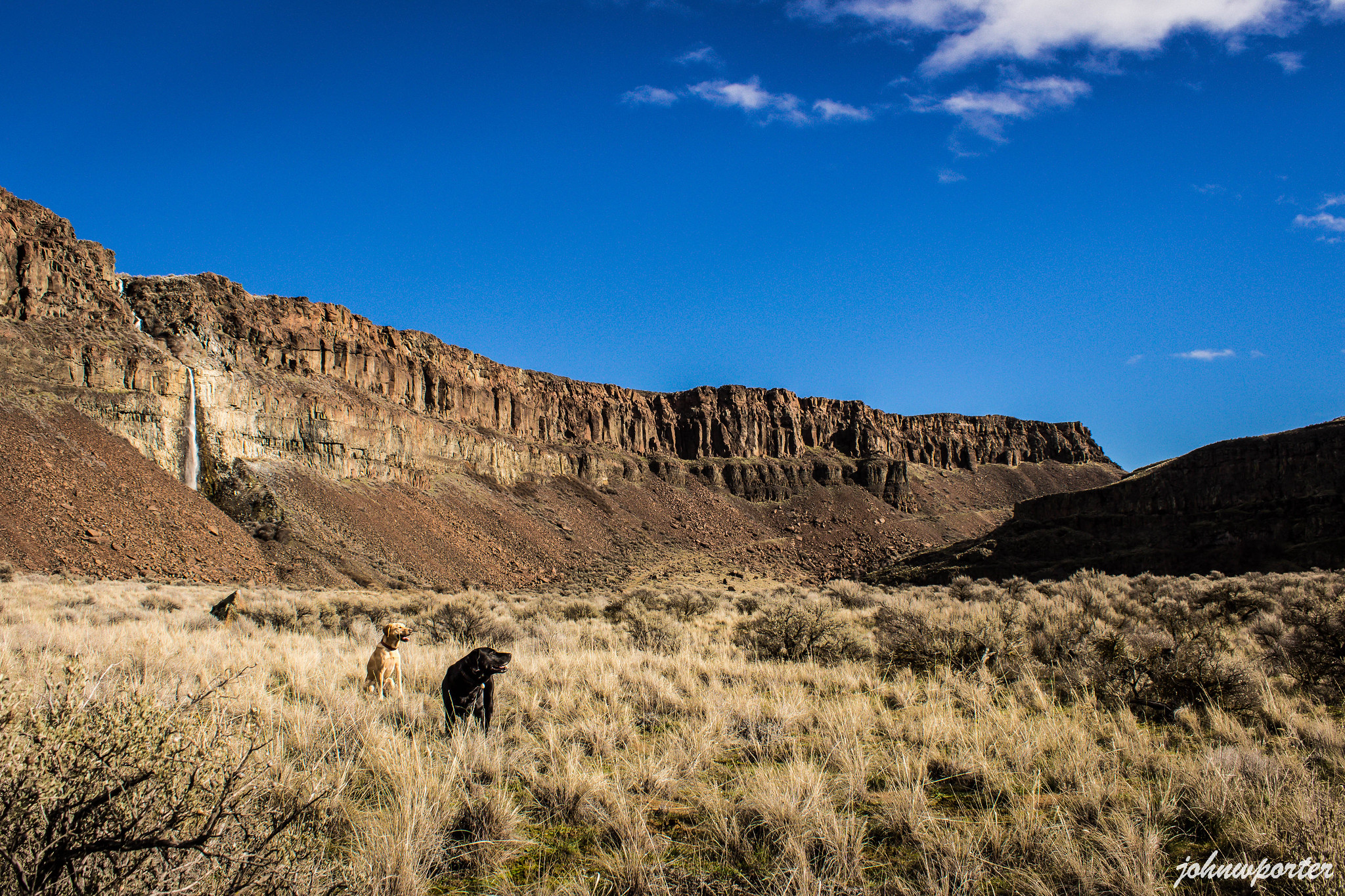 Desert dogs in Frenchman Coulee