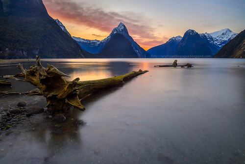 Logged Out | Milford Sound | by Arief Rasa