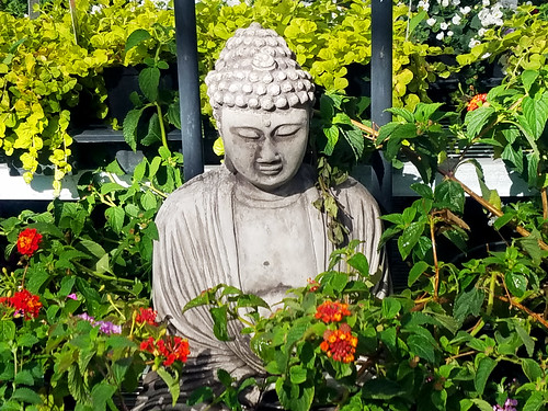 Buddha Statue in the Garden